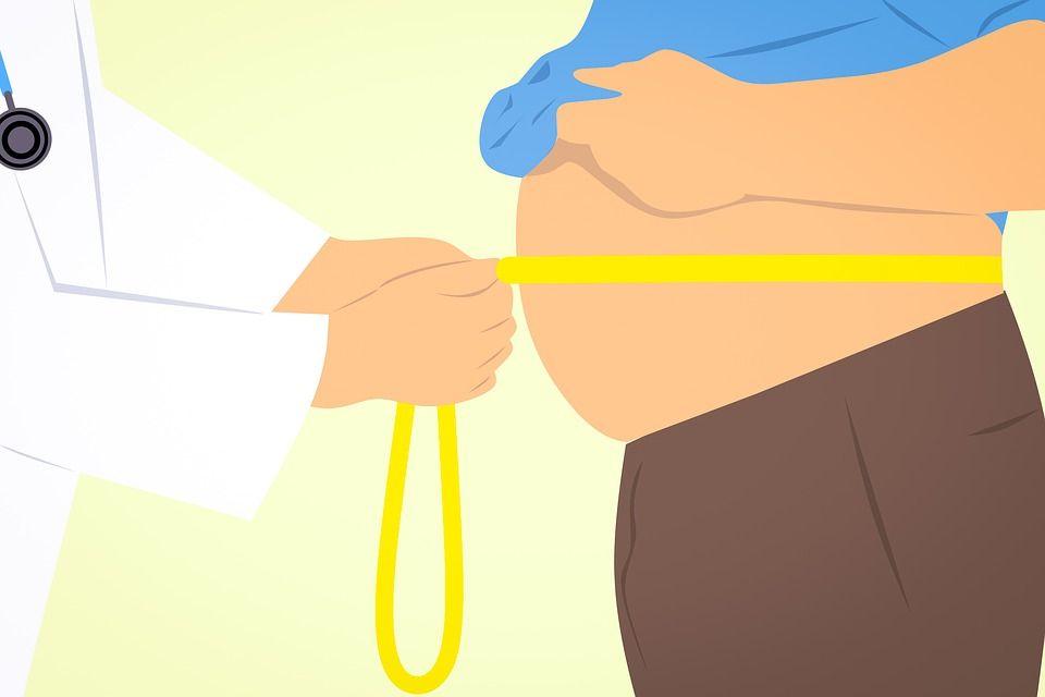 Nutrição saudável é importante para combater a obesidade
